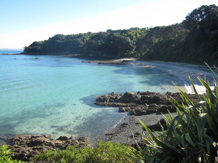 The Hauraki Gulf Marine Park, New Zealand, where Rebecca carried out her PhD research