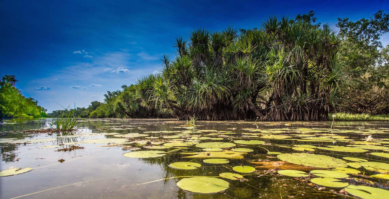 New Science: Managing invasive species in Oceania