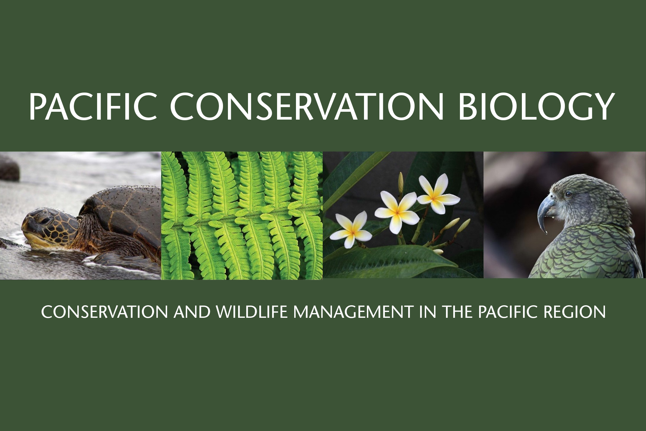 Pacific Conservation Biology seeking a Social Media Editor
