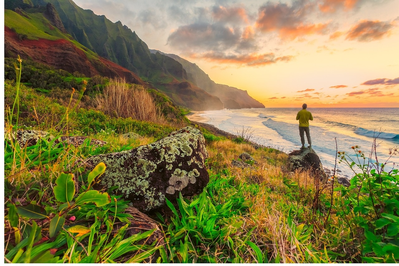 Hawaii's native species need protection: A case for expanding the State Endangered Species List
